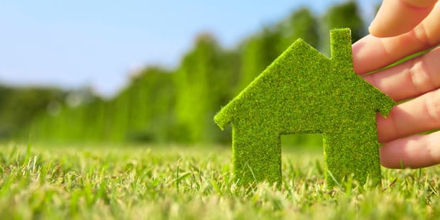 Want a Chemical-Free Home?